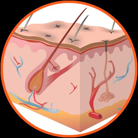 лечение волос ватутина отзывы